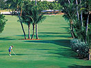 Tee up at one of 40 Fort Lauderdale area golf courses!